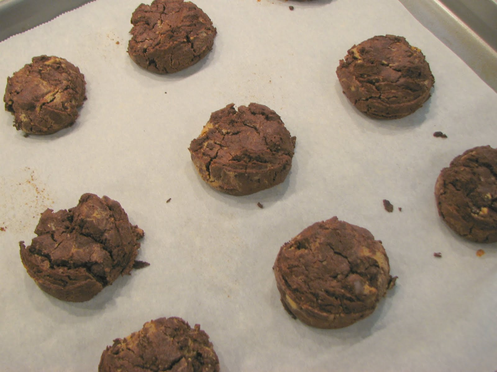 Delectably Mine: Fudgy Chocolate Peanut Butter Swirl Cookies