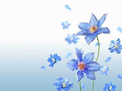 simple blue flower wallpapers - photo #39