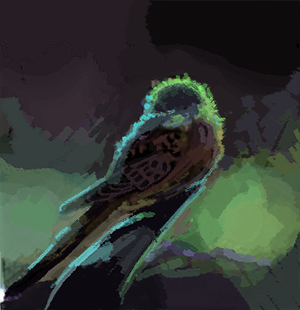 """Sleeping Budgie"" WIP Digital Painting Re-Design"