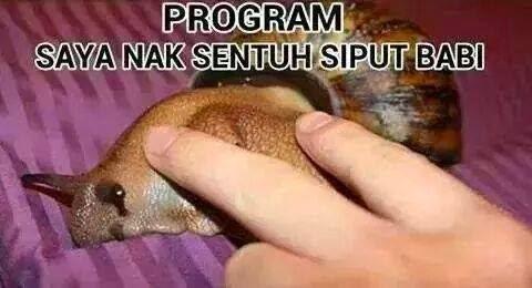 Kempen Terbaru Di Malaysia Selepas I Want To Touch A Dog