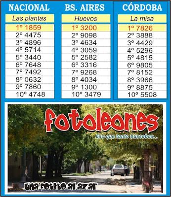 www loterias y quinielas com: