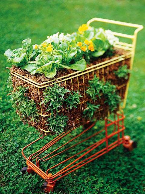 vegetable garden in a shopping cart - 101 Gardening