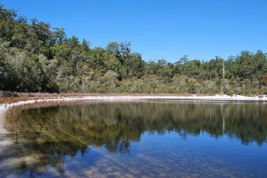 Fraser Island Wilderness Ret
