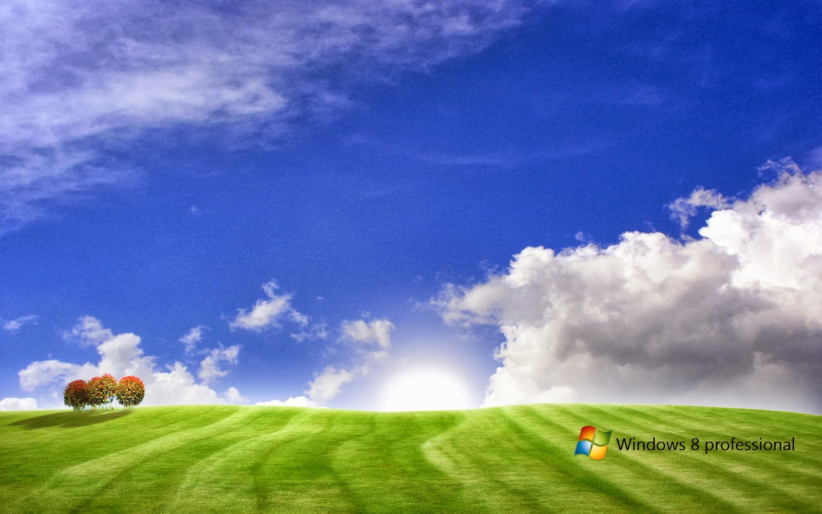 Amazing Windows 8 Picture