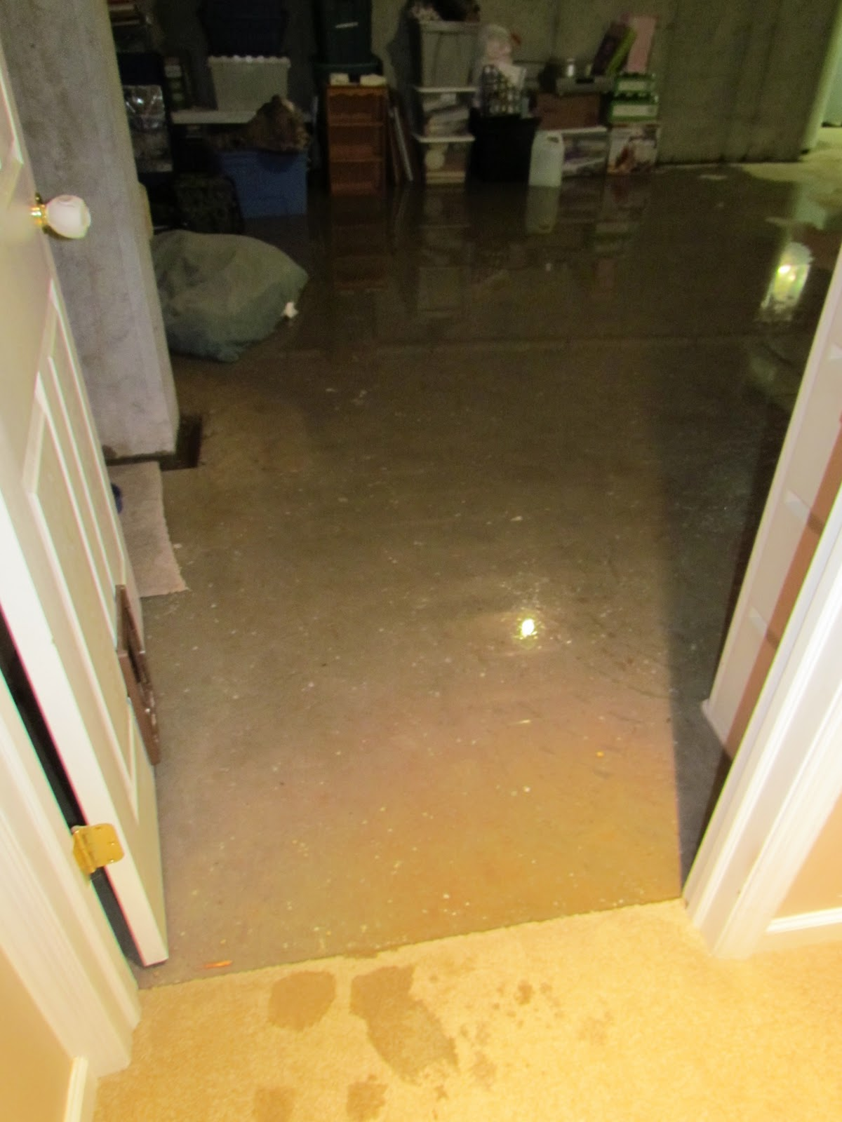 basement flooding and more