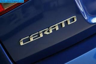 Kia cerato car 2013 logo - صور شعار سيارة كيا سيراتو 2013