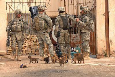 Soldiers with Pets Seen On www.coolpicturegallery.us