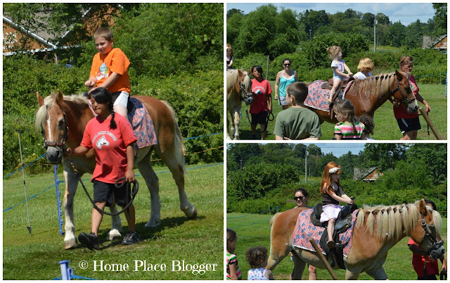 Lyman Orchards Pony Rides