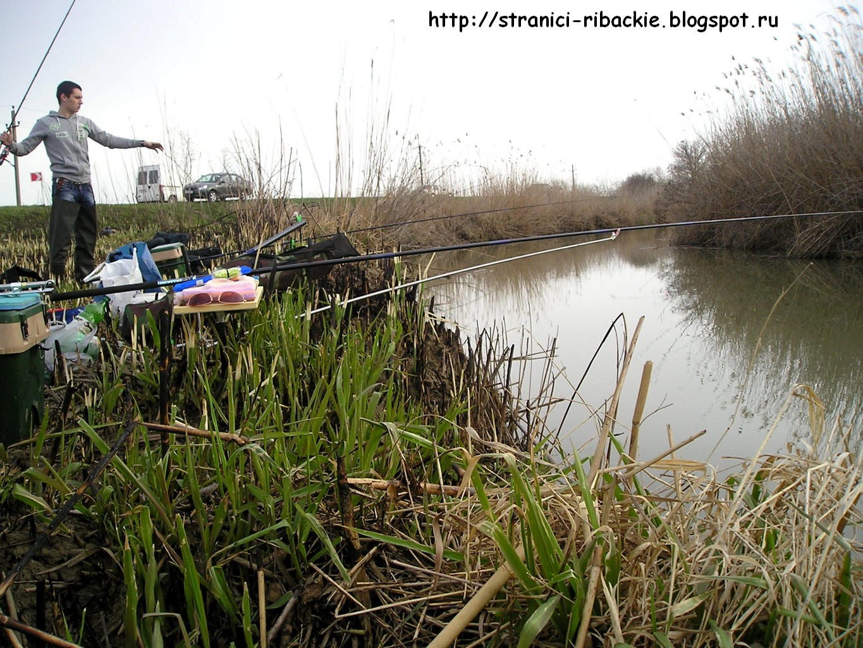 рыбалка на реке кубань в районе темрюка