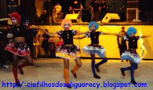 APRESENTAÇÃO - JANEIRO 2012