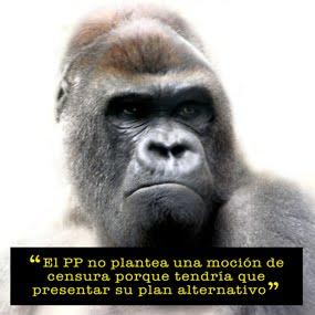 Moción Kong