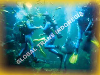 Wisata Sea World Ancol