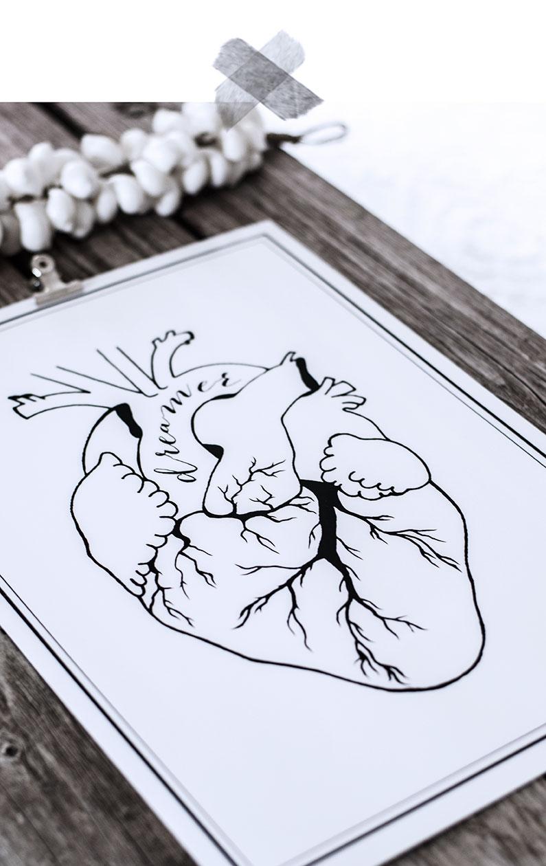 prints, anatomiskt hjärta, dreamer, art print