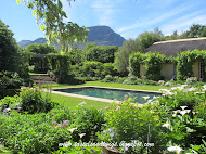 La Rive Revisited ~ Franschoek