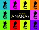 Pousada Ananas - Ilhabela