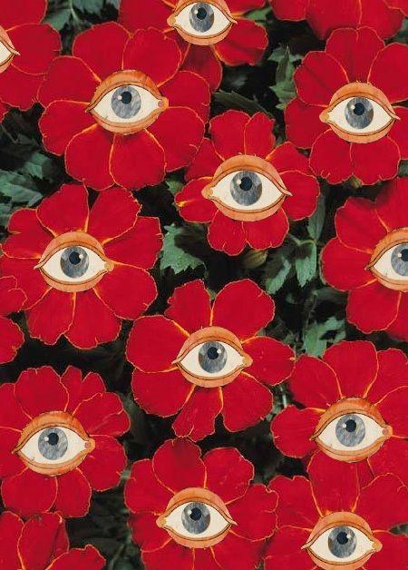 Os olhos que tudo sentem
