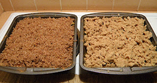 Two Baking Pans with Two Toppings