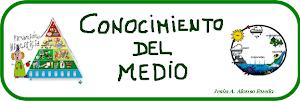 EL RINCÓN del CONOCIMIENTO del MEDIO: