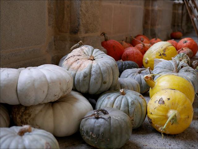 étonnantes citrouilles au cloître Saint-Sauveur de Redon