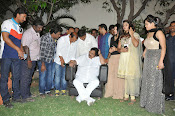 Kakathiyudu trailer launch-thumbnail-16