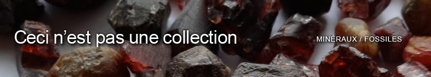 Ceci n'est pas une collection