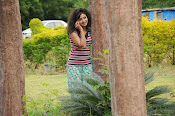 Vishnu Priya gorgeous photos-thumbnail-4