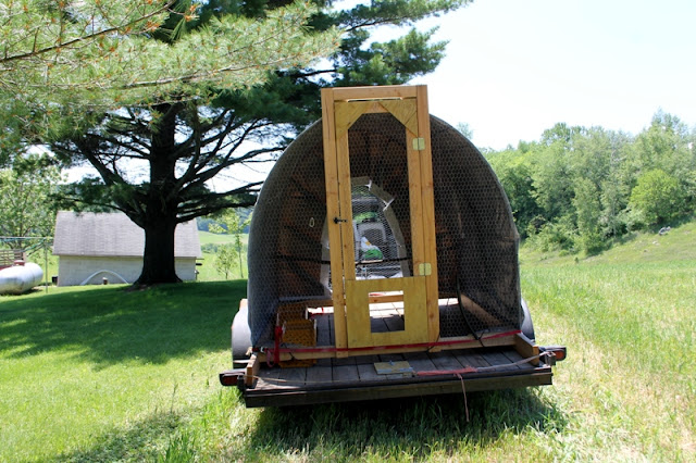 Frisky Farm mobile chicken coop hoop house