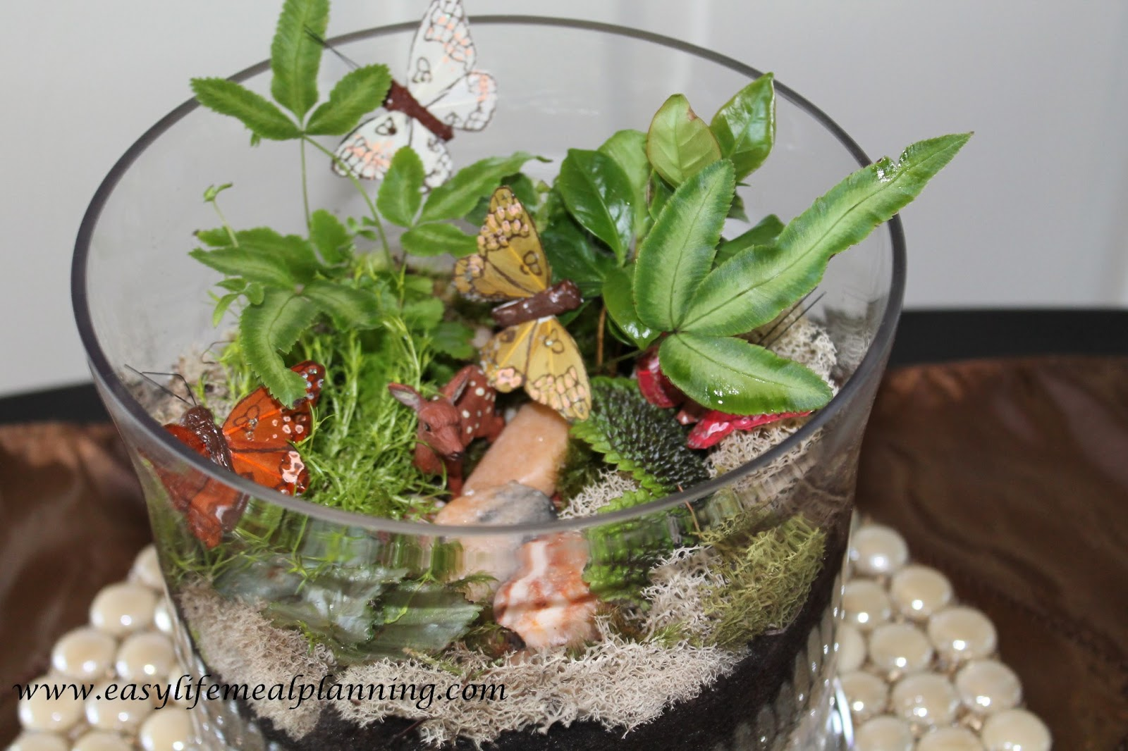 easy life meal and party planning exotic diy miniature plant terrarium. Black Bedroom Furniture Sets. Home Design Ideas