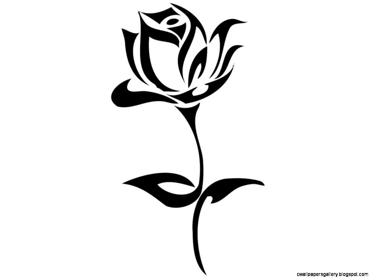 Rose Drawings Black And White   ClipArt Best