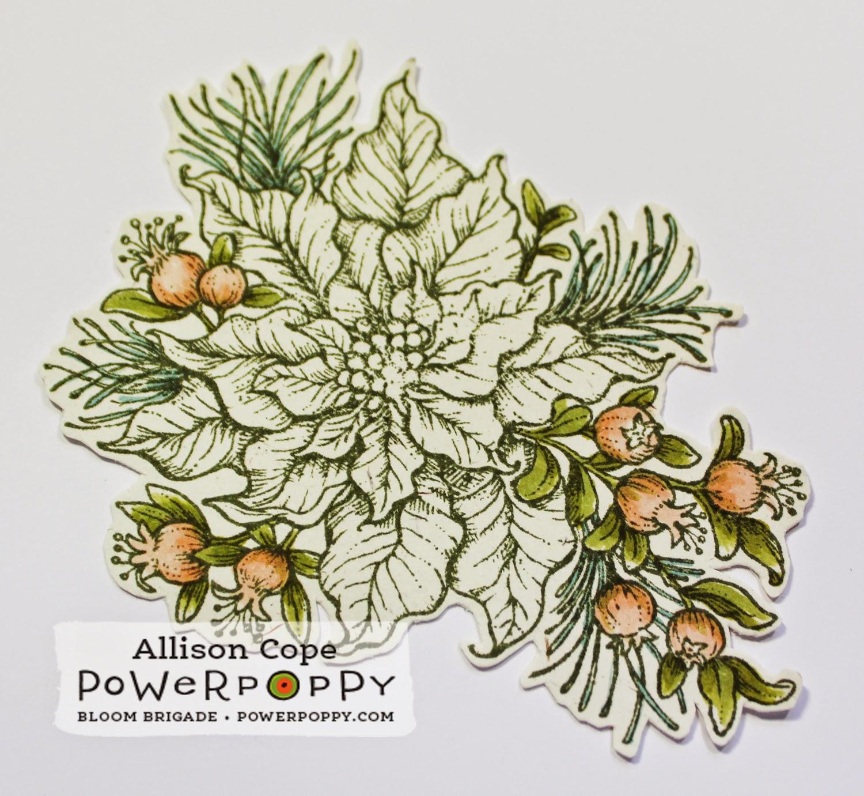 Power Poppy paper piecing tutorial Poinsettia