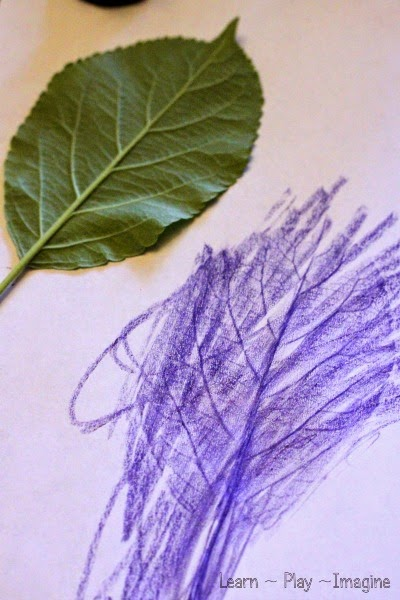 How to make leaf rubbings - simple art for kids