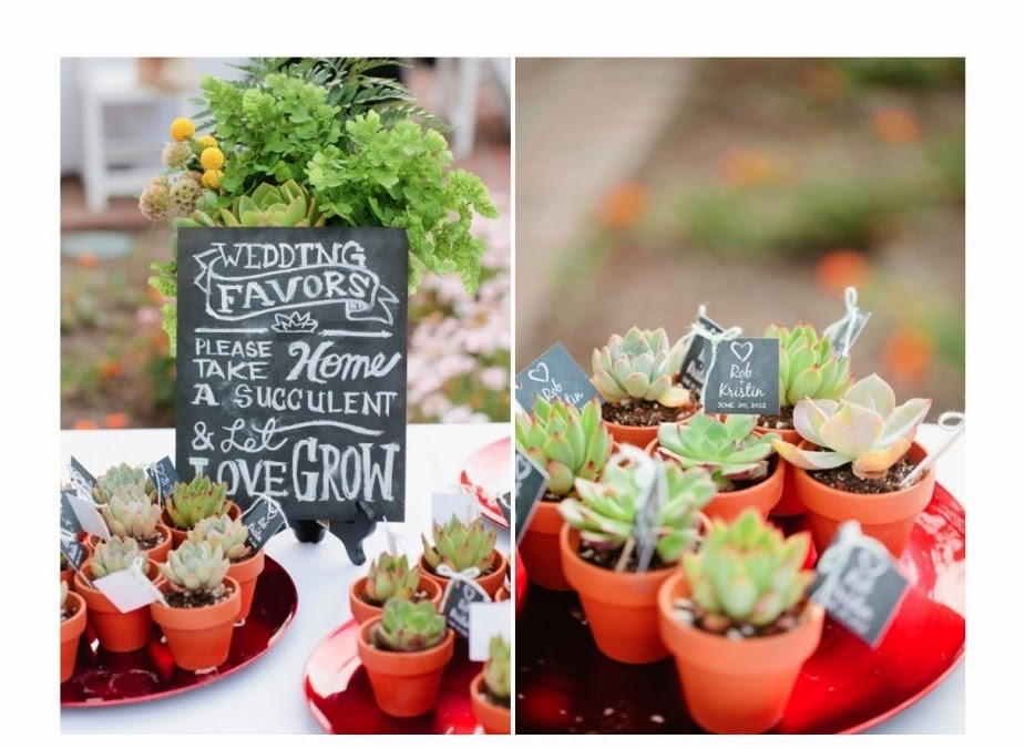 Bridal Trends Succulent Wedding Favors Buffalo Indie Weddings