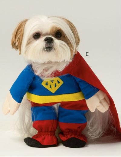 Easy do it yourself dog halloween costumes unique homemade costumes easy do it yourself dog halloween costumes diy dog halloween costumes do it yourself ideas solutioingenieria Images