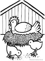 Gambar Ayam Dipeternakan