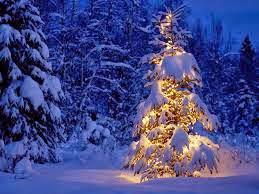 Lirik Lagu Natal Apa Arti Natal – Delon