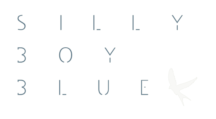 SillyBoyBlue