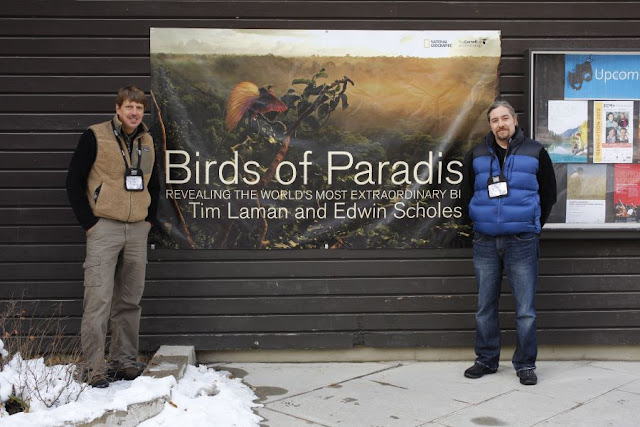 Birds of Paradise Book from Tim Laman and Edwin Scholes