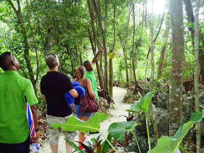 Hike on the New Nature Trail at Mystic Mountain Jamaica!
