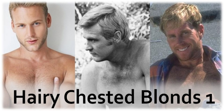 Hairy Chested Blonds