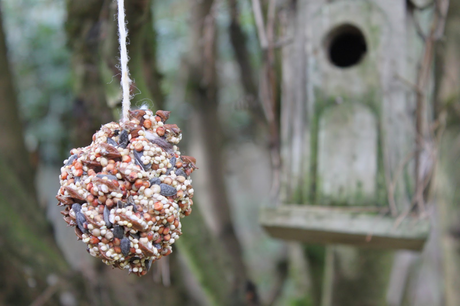green owl art easy bird feeder crafts