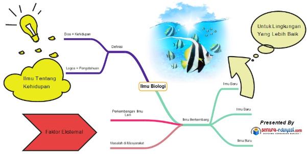 Mind map tentang kesimpulan materi percabangan ilmu biologi