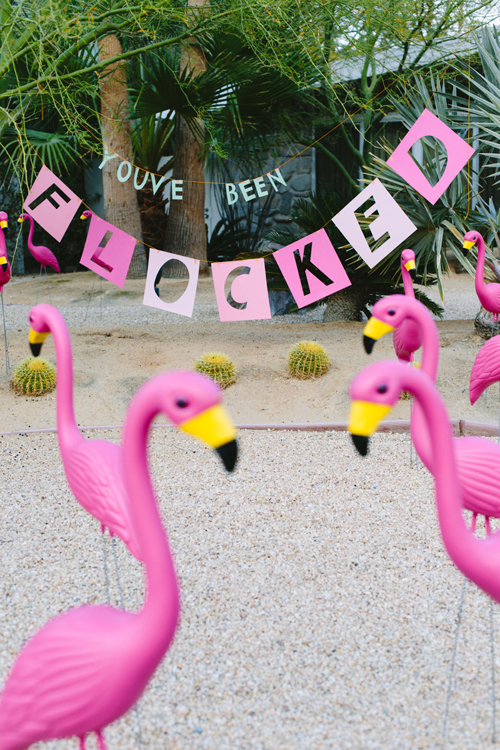 April Fool's Day prank with flamingos
