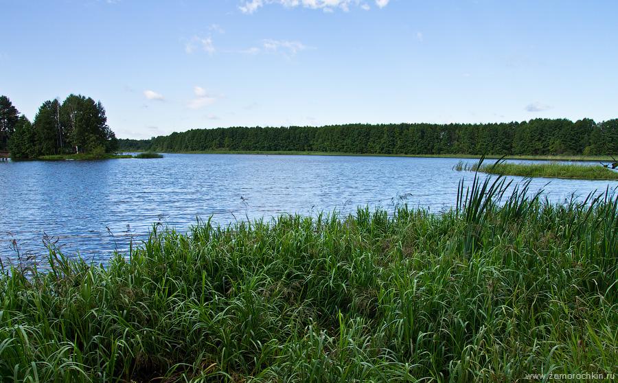 Пейзаж с озером | Landscape with a lake