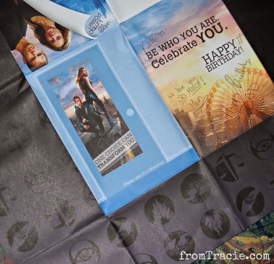 Factions Inside Divergent Card