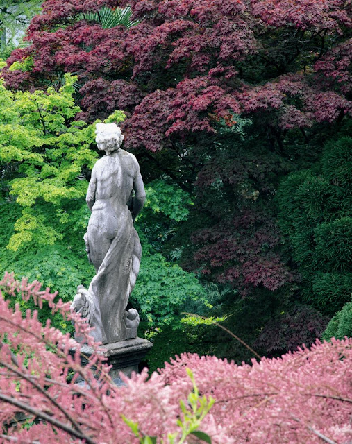 Marta tra i fiori i venessia gente grama e vagabonda - Arte e giardino ...