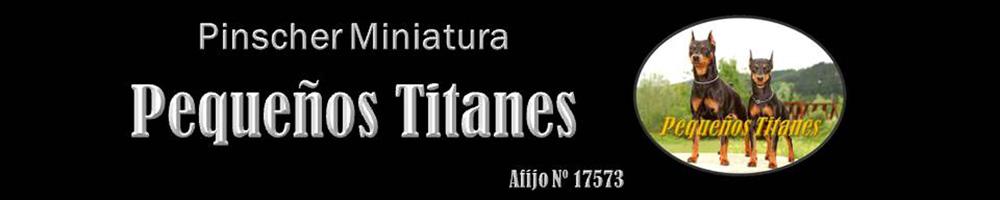 Pequeños Titanes