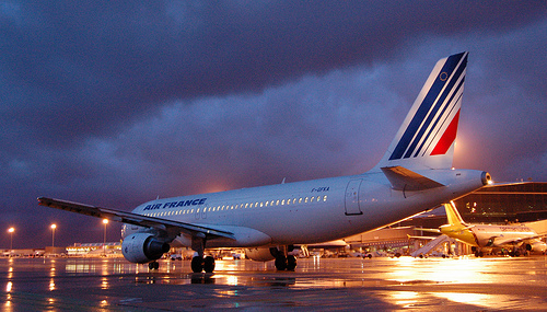 Un clandestin meurt en tombant d 39 un avion air france for Interieur d un avion air france
