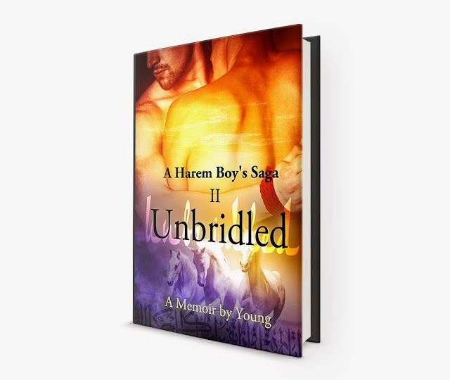 http://www.amazon.com/Unbridled-Harem-Boys-Saga-Book-ebook/dp/B00L8F1RYO/ref=sr_1_2?s=books&ie=UTF8&qid=1431708468&sr=1-2&keywords=a+harem+boy%27s+saga