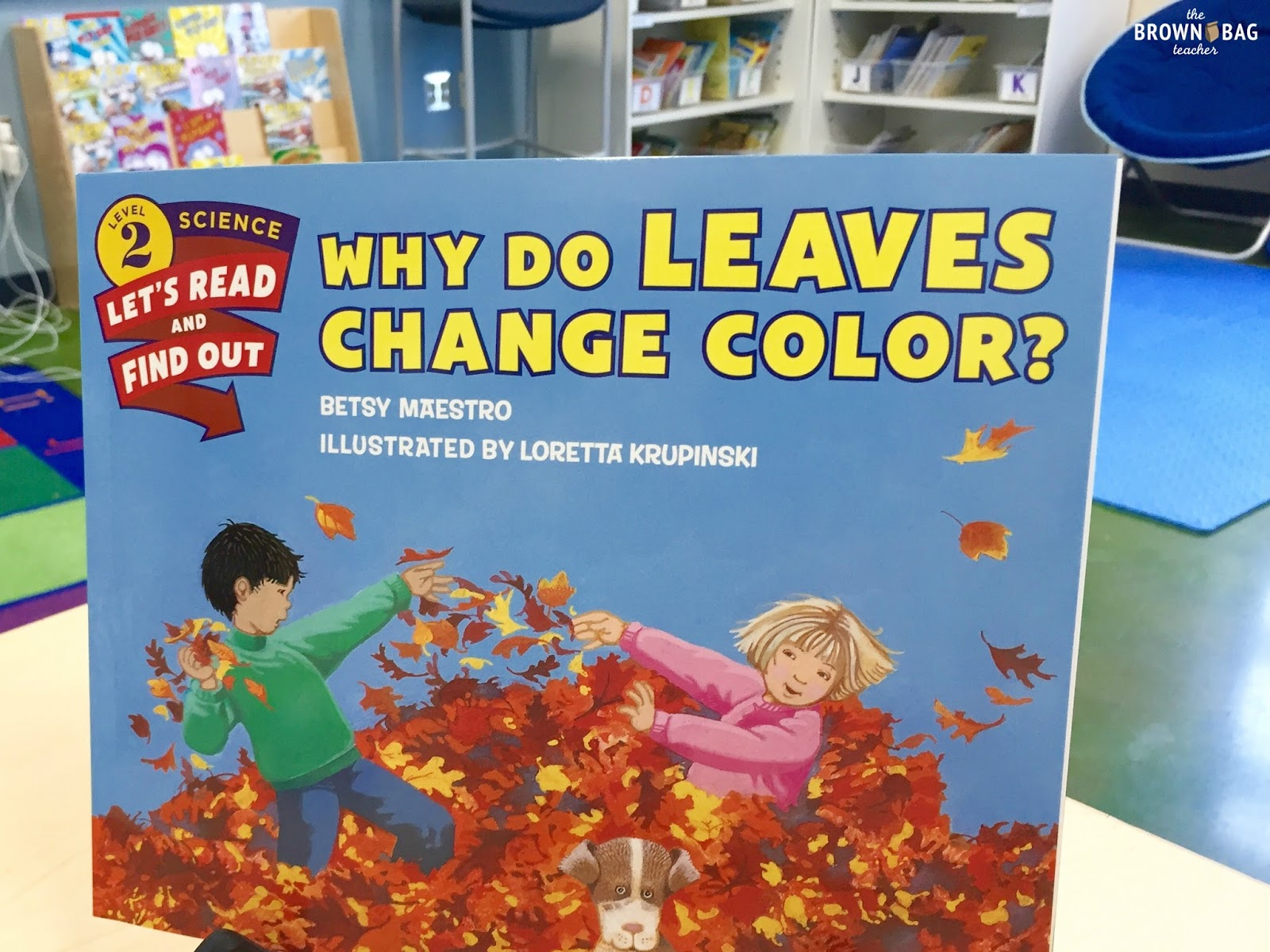Leaf Chromatography: Why do leaves change color?   The Brown-Bag ...