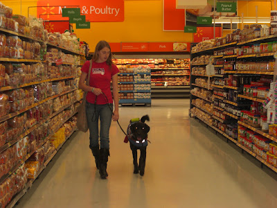 Picture of Rudy in coat/harness beside me - doing a 'forward' inside Wal-Mart